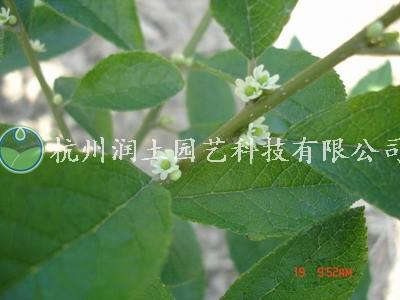 2011126150136.jpg